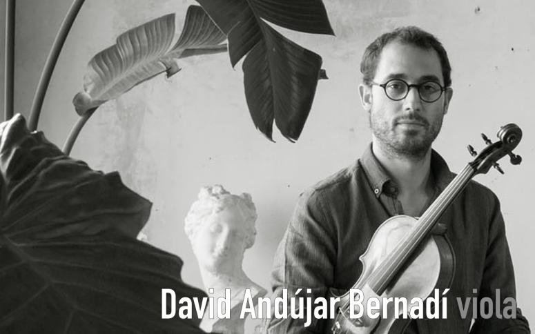 perfil david